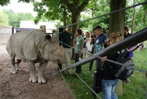Group with Indian rhino. Photo: Emily Damstra