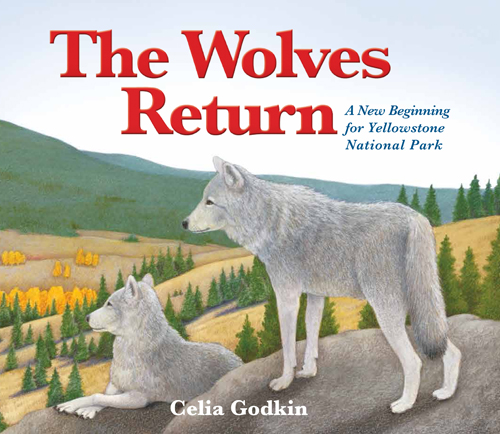 The Wolves Return: A New Beginning for Yellowstone National Park by Celia Godkin